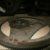 Маховик 119-й двигатель Mercedes-Benz W140